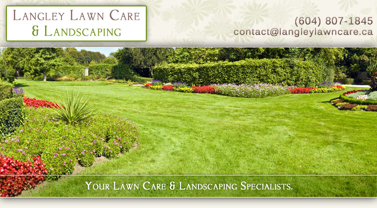 Professional lawn & garden care, tree maintenance, rubbish removal, pressure washing  & landscaping services for Langley, Walnut Grove, Fort Langley, Cloverdale and Aldergrove.